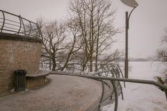 积雪的树和长凳在城市停放 一个年长人在休闲公园 免版税库存图片