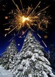 积雪的树和闪烁发光物 免版税库存照片
