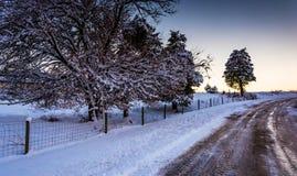 积雪的树和领域沿一条土路在农村约克Cou 免版税库存照片