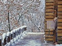 绘积雪的树的艺术家 免版税库存照片