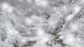 积雪的树种植冬天过滤器的,作用森林 影视素材