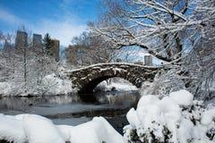 积雪的桥梁在中央公园在纽约 免版税图库摄影