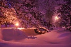 积雪的桥梁在公园 库存照片