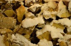 积雪的桦树木柴 免版税库存照片