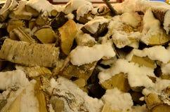 积雪的桦树木柴 库存照片