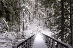 积雪的森林冬天风景桥梁的有handr的 库存图片