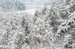 积雪的森林和河可看见从小山 免版税库存图片