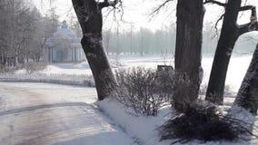 积雪的清除设备在公园,冬天 股票视频