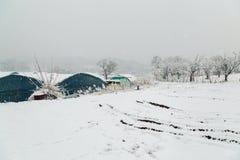 积雪的温室和冬天风景 免版税库存图片