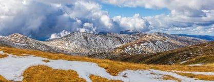 积雪的澳大利亚阿尔卑斯和黄色gr的美好的全景 库存照片