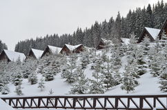 积雪的瑞士山中的牧人小屋,与拷贝空间的冬天背景 库存照片