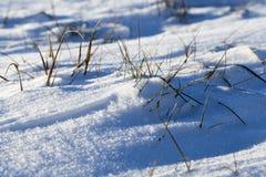 积雪的表面 免版税库存照片