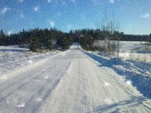 积雪的路和森林在乡下 库存照片
