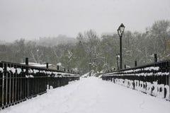积雪的路面 图库摄影