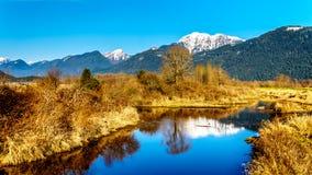 积雪的金黄耳朵山和从彼特Addington沼泽堤看的边缘峰顶费沙尔谷的在枫树岭附近 库存照片