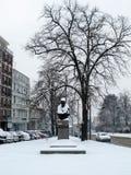 积雪的雕象在公园 免版税库存照片