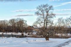 积雪的领域、树和河冬天风景在早期的有薄雾的早晨 库存照片