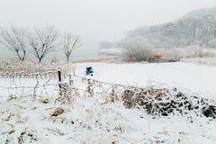 积雪的领域和湖 库存图片