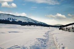 积雪的风景,克什米尔,查谟和克什米尔,印度 库存图片