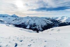 积雪的高Tatras冬天foto在波兰 库存图片