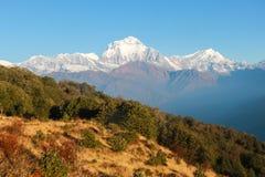 积雪覆盖的喜马拉雅山在尼泊尔在黎明 库存图片