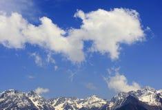 积雪覆盖的山 图库摄影
