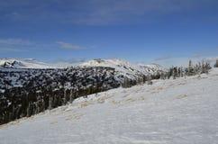 积雪覆盖的峰顶和倾斜 图库摄影