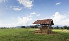 秸杆农舍在草甸 库存照片