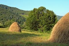 秸杆堆在草甸的 免版税图库摄影
