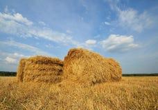 秸杆大包在乡下 免版税库存图片