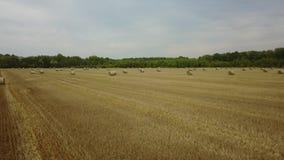 秸杆收获领域农业的大包收获捆种田方形的秋天秋天空中照片摄影 影视素材