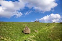 秸杆的捆绑在绿色草甸的 图库摄影