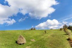 秸杆的捆绑在绿色草甸的 免版税库存照片