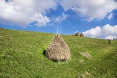 秸杆的捆绑在绿色草甸的 免版税库存图片