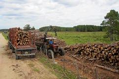 移动和运输与一辆老卡车的乌拉圭收割机日志 免版税库存照片