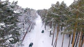 移动在冬天森林里的汽车鸟瞰图 股票视频