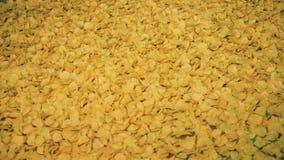 移动在工业传动机的薯片在工厂 影视素材