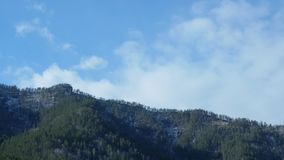 移动在松树高地森林有雾的早晨风景的云彩在山 股票录像