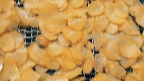 移动沿机制的被上油的油炸马铃薯片顶视图  股票录像