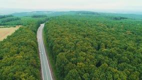 移动沿路的汽车鸟瞰图在绿色领域之间 4K从森林的无缝的转折到路和领域里 股票录像