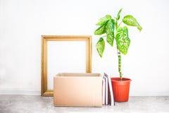 移动的在罐的箱子,花,在白色背景车库售物的老框架和移动的概念复制空间 库存图片
