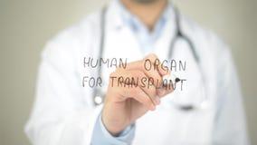 移植的人体器官,在透明屏幕上的医生文字 库存图片