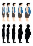 从稀薄的另外身体大量到也油脂在剪影 在白色背景的传染媒介例证 免版税库存图片