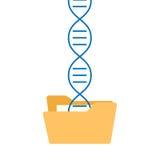 程序化染色体信息挽救的脱氧核糖核酸 库存例证