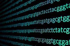 程序化染色体 免版税库存图片