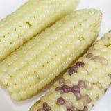 稠粘的玉米 库存照片