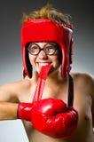滑稽的书呆子拳击手 免版税图库摄影