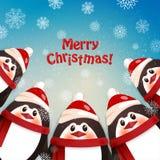 滑稽的企鹅 背景蓝色雪花白色冬天 免版税图库摄影