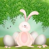 滑稽的兔子用复活节快乐的鸡蛋 免版税库存照片