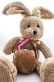 滑稽的兔宝宝玩具 库存图片